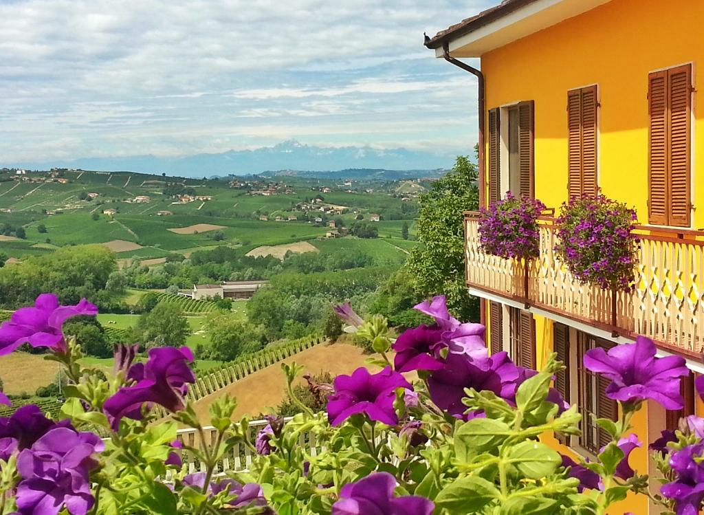 Panorama, vingård, ferieleiligheter, Cascina Castagna, Italia