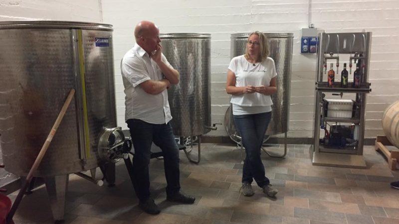 Vinsmaking, mikrovineri kvalitetsvin vinproduksjon